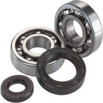 _Hot Rods Crank Shaft Bearing And Seals KTM SX-F 250 12 | K076 | Greenland MX_
