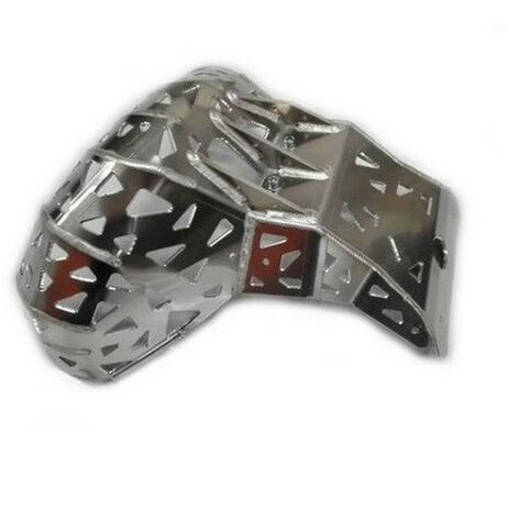 _P-Tech P-Tech Skid Plate with Exhaust Pipe Guard Beta RR 250/300 13-19 | PK002 | Greenland MX_